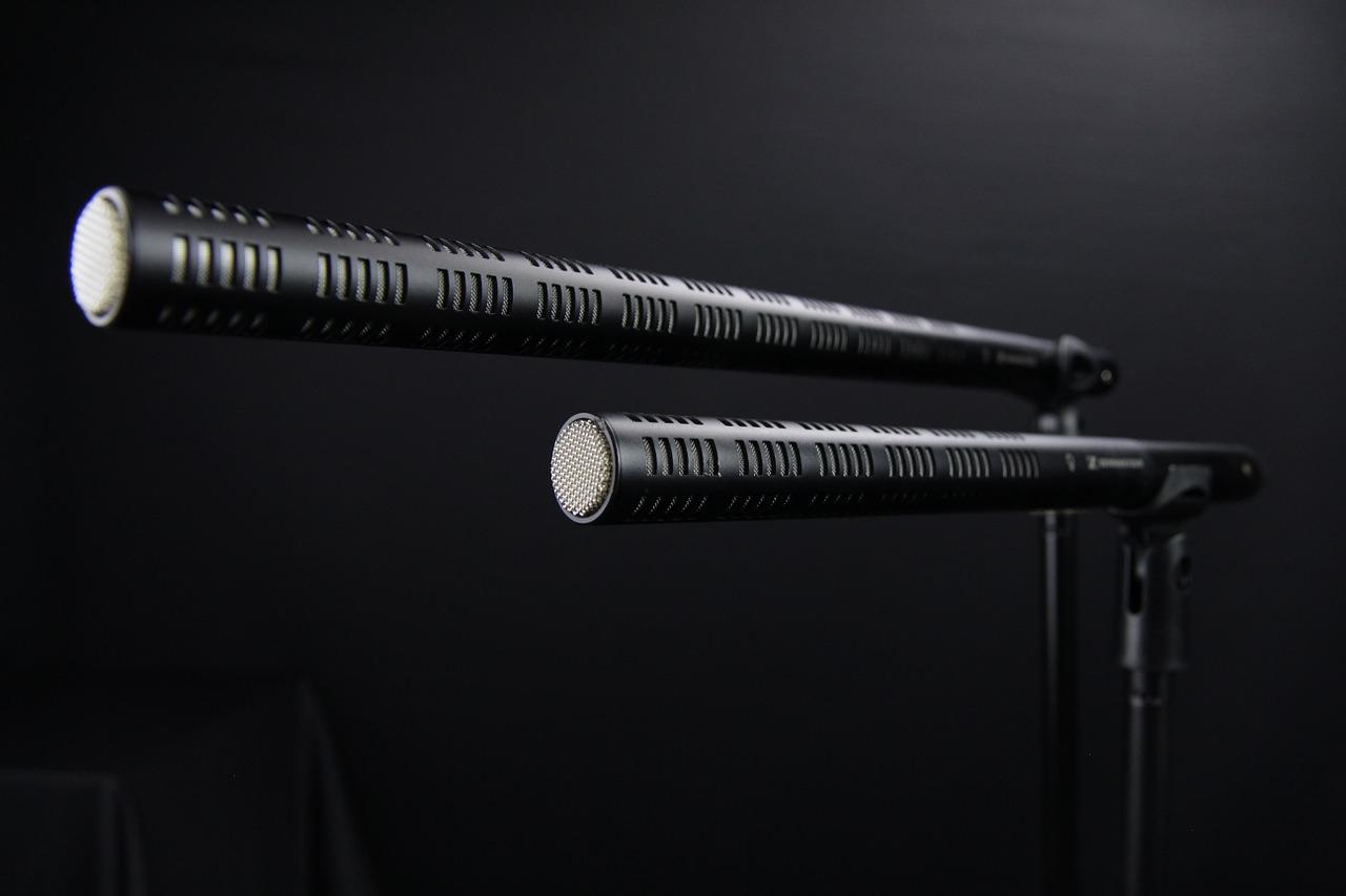 микрофон пушка